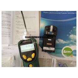 华瑞PID传感器PGM-7300voc检测仪