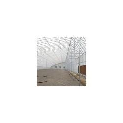冬暖式日光棚工程-哪里有提供高性价冬暖式日光棚