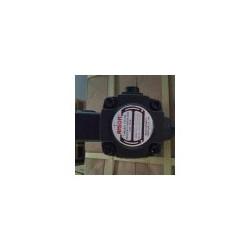 ANSON油泵PVDF-420-335-10S