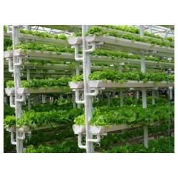 优质蔬菜种植槽批发价格_新疆农业用种植槽